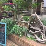 アムリタ食堂の前の流木の看板が目印!この地下になります。